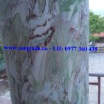 Cột sơn giả đá